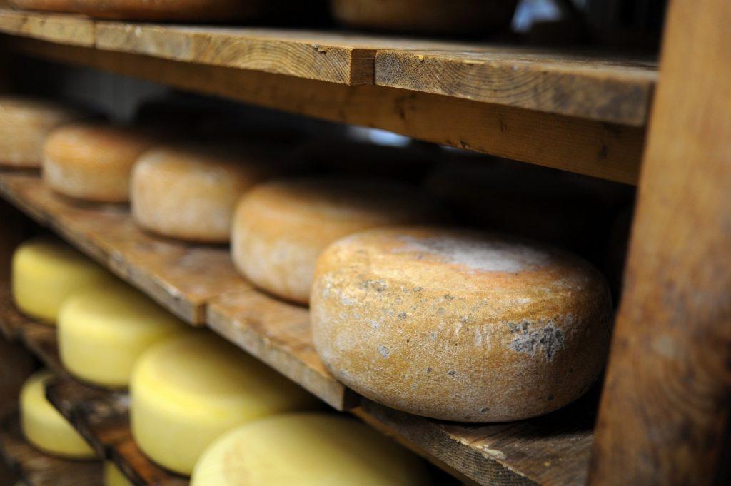 Sujet Sud Ouest Gourmand hors-série 2017. Rubrique Fromage et produits laitiers. Reportage à la ferme Lait P'tits Béarnais